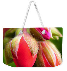 Weekender Tote Bag featuring the photograph Pending Beauty by Deb Halloran