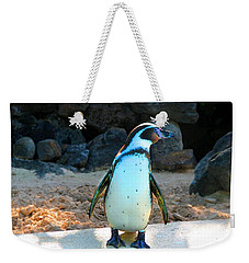 Weekender Tote Bag featuring the photograph Penguin by Kristine Merc