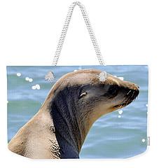 Pensive Sea Lion  Weekender Tote Bag