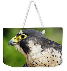 Weekender Tote Bag featuring the photograph Peregrine Falcon by Cynthia Guinn