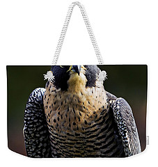 Peregrine Focus Weekender Tote Bag by Mary Jo Allen