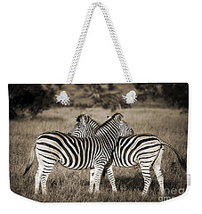Perfect Zebras Weekender Tote Bag by Delphimages Photo Creations