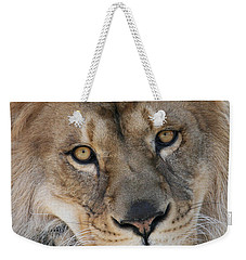 Pet Me Weekender Tote Bag by Judy Whitton