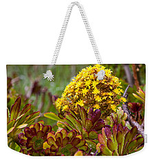 Petal Dome Weekender Tote Bag by Melinda Ledsome