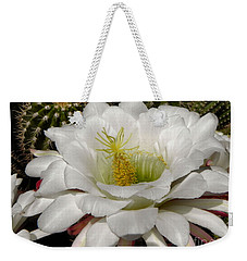Weekender Tote Bag featuring the photograph Petals And Thorns by Deb Halloran