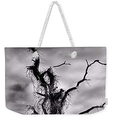 Weekender Tote Bag featuring the photograph Petrified Tree by Rosalie Scanlon