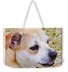 Pets Weekender Tote Bag