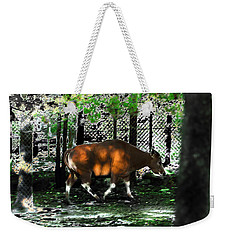 Phenomena Of Banteng Walk Weekender Tote Bag