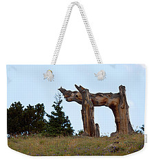Pi In The Sky Weekender Tote Bag