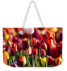 Pick Me Weekender Tote Bag by Ronda Kimbrow