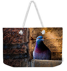Pigeon Of The City Weekender Tote Bag by Bob Orsillo