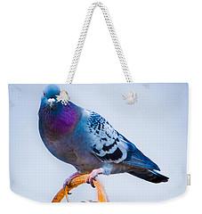 Pigeon On Sunflower Weekender Tote Bag