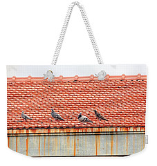 Weekender Tote Bag featuring the photograph Pigeons On Roof by Aaron Martens