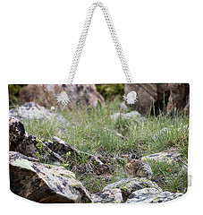 Weekender Tote Bag featuring the photograph Pika  by Michael Chatt