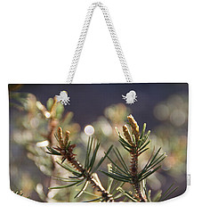 Weekender Tote Bag featuring the photograph Pine by David S Reynolds
