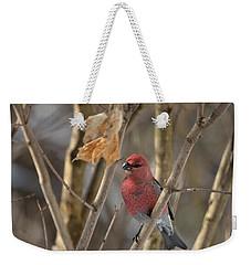 Weekender Tote Bag featuring the photograph Pine Grosbeak by David Porteus