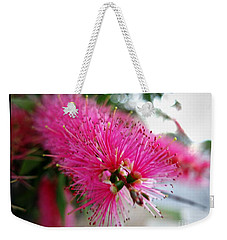 Weekender Tote Bag featuring the photograph Pink Bottlebrush Flower - Within Border by Leanne Seymour