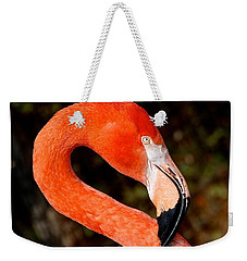 Weekender Tote Bag featuring the photograph Not So Pink Flamingo by Dee Dee  Whittle