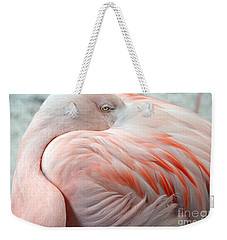 Weekender Tote Bag featuring the photograph Pink Flamingo II by Robert Meanor