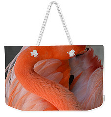 Weekender Tote Bag featuring the photograph Pink Flamingo by Robert Meanor