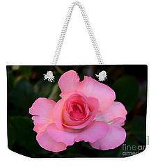 Pink Floribunda Rose Weekender Tote Bag