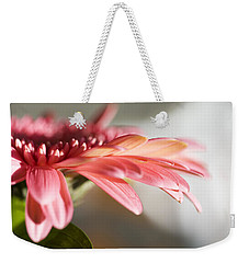 Weekender Tote Bag featuring the photograph Pink Gerber Daisy by Marilyn Hunt