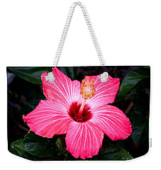 Weekender Tote Bag featuring the photograph Pink Hibiscus Flower by Kristen Fox