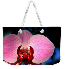 Pink House Weekender Tote Bag by Greg Allore