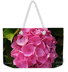 Weekender Tote Bag featuring the photograph Blushing Rose by Jeannie Rhode