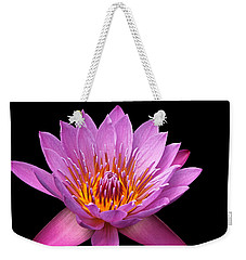 Weekender Tote Bag featuring the photograph Pink Lady On Black by Judy Vincent