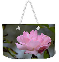 Weekender Tote Bag featuring the photograph The Last Rose by Debra Martz