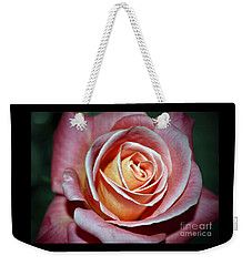 Weekender Tote Bag featuring the photograph Pink Rose by Savannah Gibbs