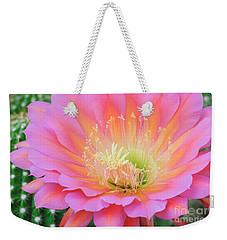 Pink Saucer Weekender Tote Bag by Tamara Becker