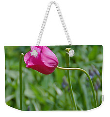 Pink Tulip Weekender Tote Bag by Aimee L Maher Photography and Art Visit ALMGallerydotcom