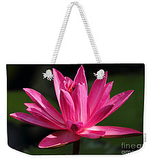 Pink Water Lily Weekender Tote Bag by Meg Rousher