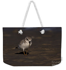 Piping Plover Photo Weekender Tote Bag by Meg Rousher