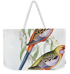 Platycercus Adelaidae From The Birds Of Australia Weekender Tote Bag by John Gould