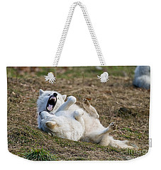 Weekender Tote Bag featuring the photograph Playful Arctic Wolves by Wolves Only