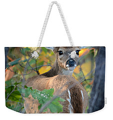 Playful Fawn Toddler Weekender Tote Bag