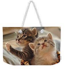 Playful Kittens Weekender Tote Bag