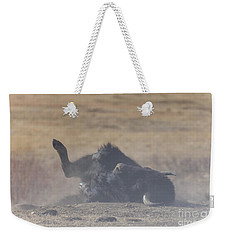 American Bison Playing In The Dirt At Custer State Park South Dakota Weekender Tote Bag