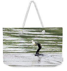Pleading - Let Me Go... Weekender Tote Bag