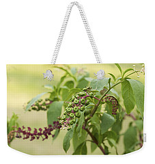 Pleasing To The Eye - Pokeweed Vine Art Print Weekender Tote Bag by Jane Eleanor Nicholas