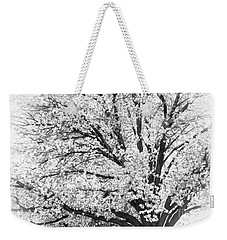 Weekender Tote Bag featuring the photograph Poetry Tree by Roselynne Broussard