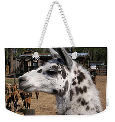 Weekender Tote Bag featuring the photograph Polka Dot Llama Pogo Rules by Belinda Lee
