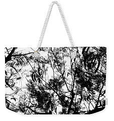 Weekender Tote Bag featuring the photograph Poinciana Lace by Amar Sheow