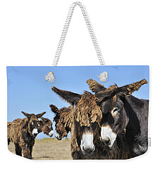 Weekender Tote Bag featuring the photograph Poitou Donkey 3 by Arterra Picture Library
