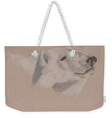 Polarization Weekender Tote Bag