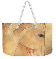 Poll Meet Atlas Axis Weekender Tote Bag by Catherine Twomey