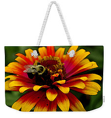 Weekender Tote Bag featuring the photograph Pollenating Bumblebee by James C Thomas